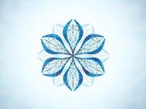 Bevroren bloem/Kristalbloem Stock Afbeelding