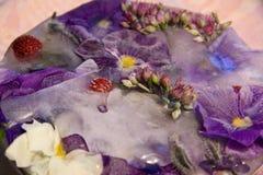 Bevroren bloem van liefde-in-luiheid Royalty-vrije Stock Foto