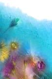 Bevroren Bloemen in Ijs Stock Foto's