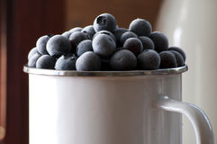 Bevroren blueberrys Royalty-vrije Stock Foto's