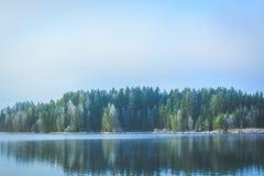 Bevroren bomen na de herfst eerst minus graden Stock Afbeelding