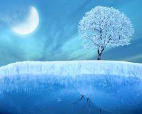 Bevroren boom op ijs Stock Foto