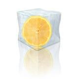 Bevroren citroen Royalty-vrije Stock Foto