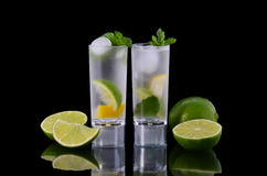 Bevroren cocktail Royalty-vrije Stock Afbeeldingen