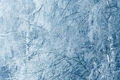 Bevroren in de takken van de ijsboom Bevroren boomtak in de winter Royalty-vrije Stock Afbeeldingen