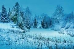 bevroren de vijverbegin van het de winterlandschap bos van de winterbomen binnen royalty-vrije stock foto