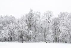 Bevroren de winterlandschap royalty-vrije stock afbeelding