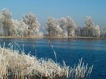 Bevroren de winterlandschap Stock Foto's