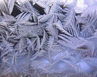 Bevroren de wintervenster Stock Afbeelding