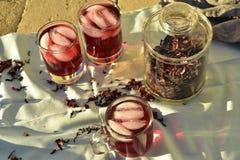 Bevroren die thee met de donkerrode bloemblaadjes van de Hibiscusbloem wordt gemaakt Stock Foto's