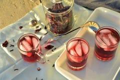 Bevroren die thee met de donkerrode bloemblaadjes van de Hibiscusbloem wordt gemaakt Stock Fotografie