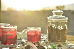 Bevroren die thee met de donkerrode bloemblaadjes van de Hibiscusbloem wordt gemaakt Royalty-vrije Stock Afbeelding