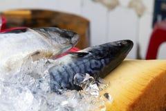 Bevroren die vissen in ijs in lokale markt worden behandeld royalty-vrije stock foto