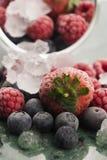Bevroren frambozen, braambessen en strawberrie royalty-vrije stock foto's