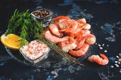 Bevroren gekookte garnalen aan het koken met citroendille en kruiden Selectieve nadruk Royalty-vrije Stock Afbeeldingen