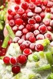 Bevroren groenten Royalty-vrije Stock Afbeelding
