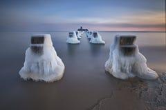 Bevroren houten golfbrekerslijn, de winter Stock Foto