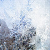 Bevroren ijs Stock Fotografie