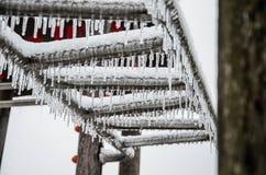 Bevroren ijskegels Stock Foto
