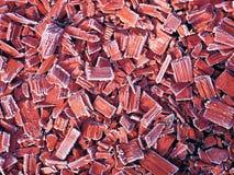 Bevroren ijzig hout stock foto