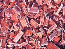 Bevroren ijzig hout royalty-vrije stock foto's