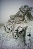 Bevroren kanonnen Royalty-vrije Stock Afbeeldingen