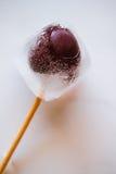 Bevroren kersen stock afbeeldingen