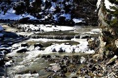 Bevroren kreek in het bos royalty-vrije stock afbeeldingen