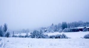 Bevroren landschap Stock Afbeelding