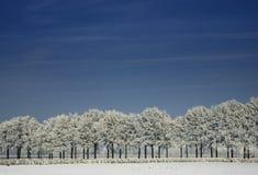 Bevroren landschap Royalty-vrije Stock Afbeeldingen