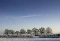 Bevroren landschap Stock Fotografie
