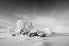 Bevroren loch, Zwarte zet op Royalty-vrije Stock Foto's