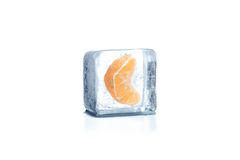 Bevroren mandarin Royalty-vrije Stock Afbeelding