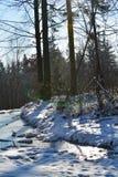 Bevroren meer in de bergen Stock Foto's