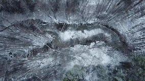 Bevroren meer in het bossatellietbeeld stock videobeelden