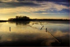 Bevroren meer, Leidschendam, Holland Royalty-vrije Stock Foto's