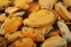 Bevroren mosselen op vissenmarkt Royalty-vrije Stock Afbeelding