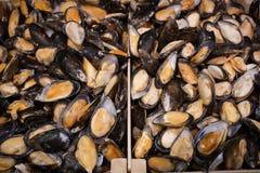 Bevroren mosselen in supermarkt Royalty-vrije Stock Fotografie