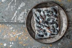 Bevroren Mosselen vacuümverpakt op een metaalplaat Royalty-vrije Stock Foto's