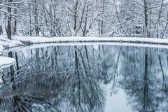 Bevroren niet vijver in de winter stock afbeelding