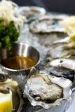 Bevroren oesters 3 stock foto's
