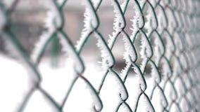 Bevroren omheining die van metaalnetwerk wordt gemaakt dat met vorstkristallen wordt behandeld, een vroege zonnige koude ochtend stock video