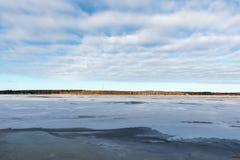 Bevroren overzees strand Royalty-vrije Stock Foto's