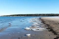 Bevroren overzees strand Royalty-vrije Stock Afbeeldingen