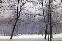 Bevroren park Stock Fotografie