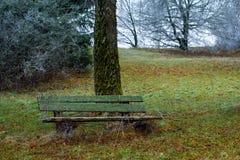 Bevroren park Royalty-vrije Stock Afbeeldingen