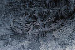 Bevroren pattertn Stock Afbeelding