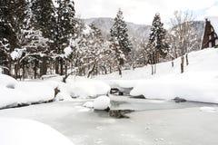 Bevroren pond met sneeuwdekkingsboom en land Royalty-vrije Stock Foto's