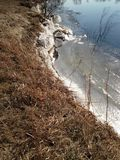 Bevroren riverbank stock afbeeldingen