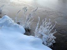 Bevroren riverbank royalty-vrije stock afbeelding